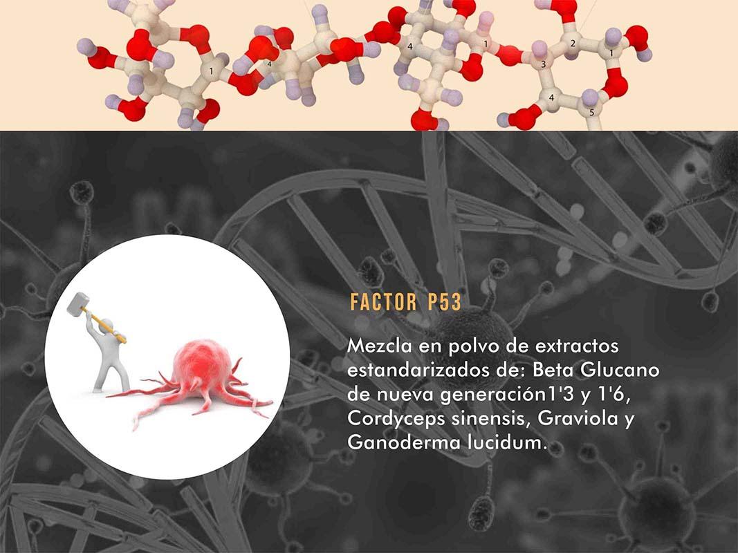Factor p53
